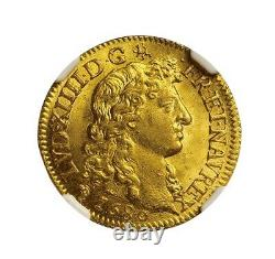Louis XIV Louis d'or à la Tête virile 1680 Lyon NGC MS66 Fleur de coin+++